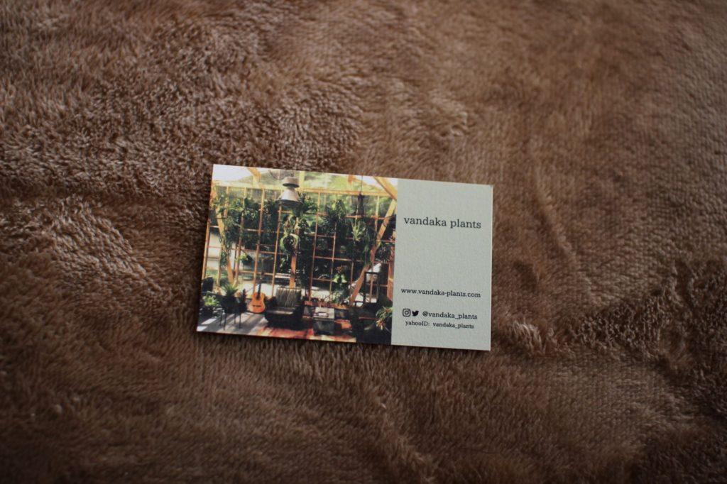 vandakaplants ショップカード