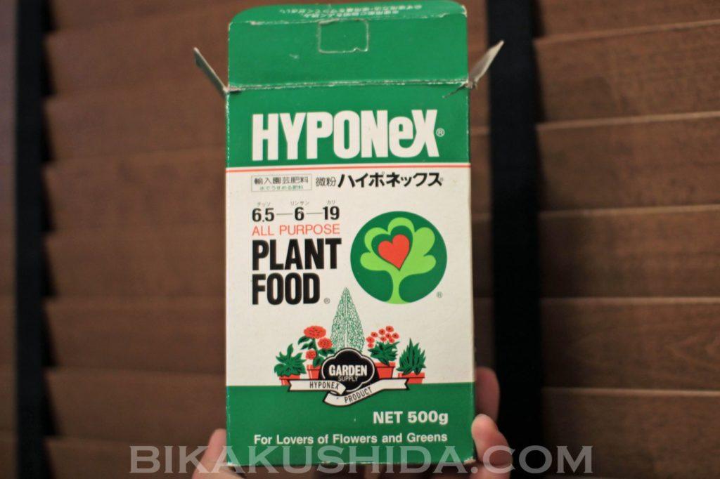 ビカクシダ 肥料 微粉ハイポネックス